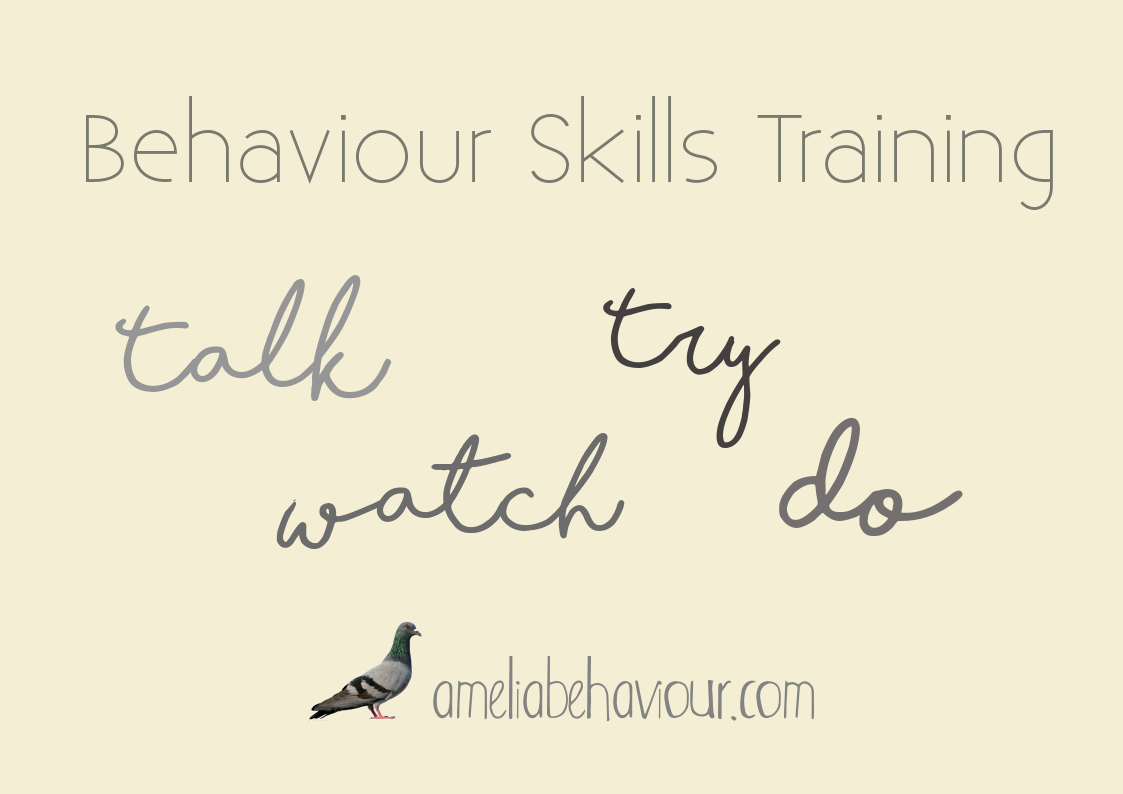behaviour skills training