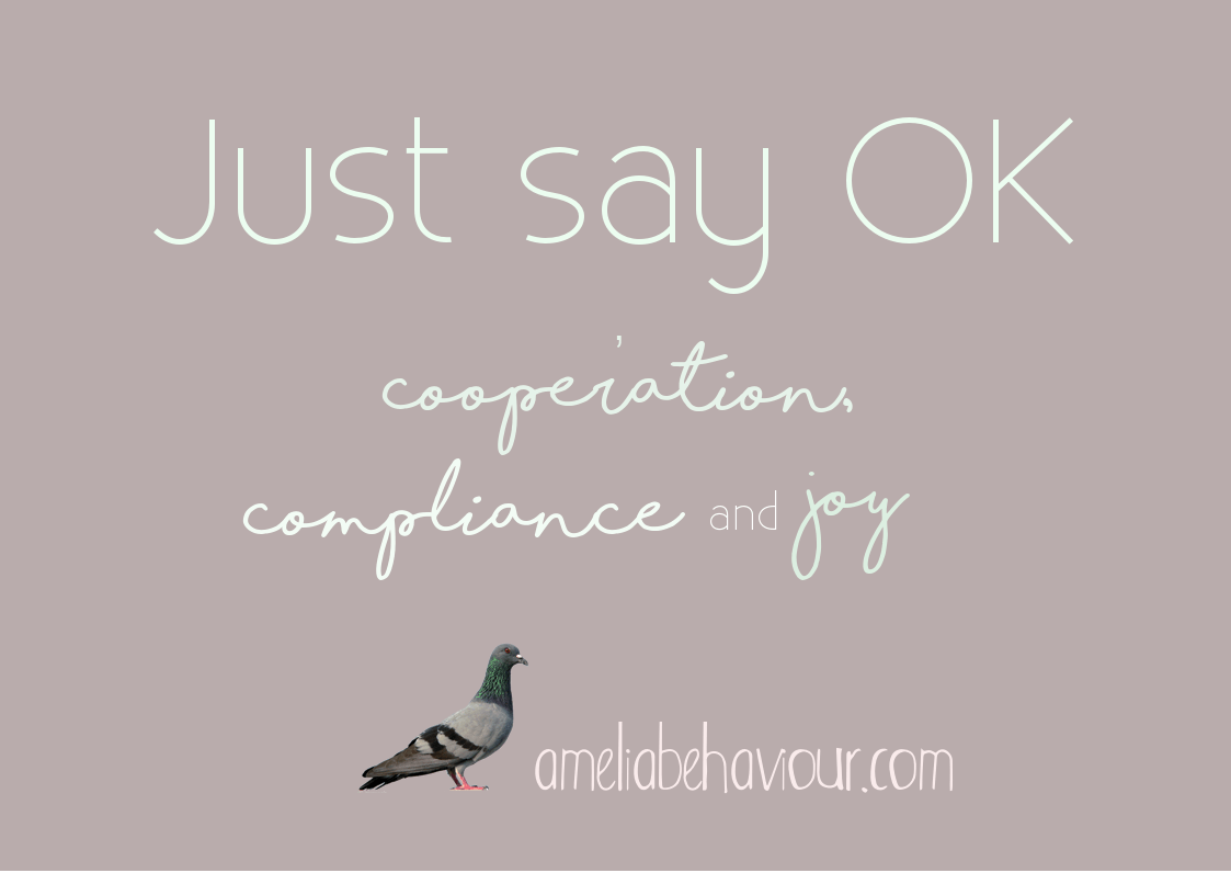 Just say OK: Notes from the home laboratory