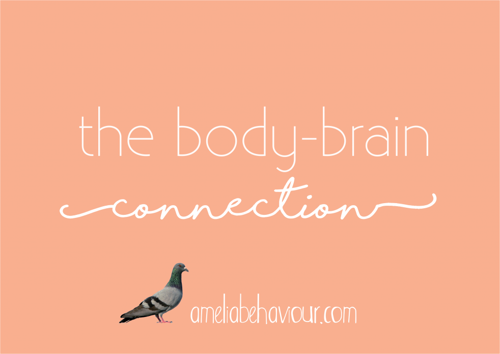 body brain connection amelia behavior