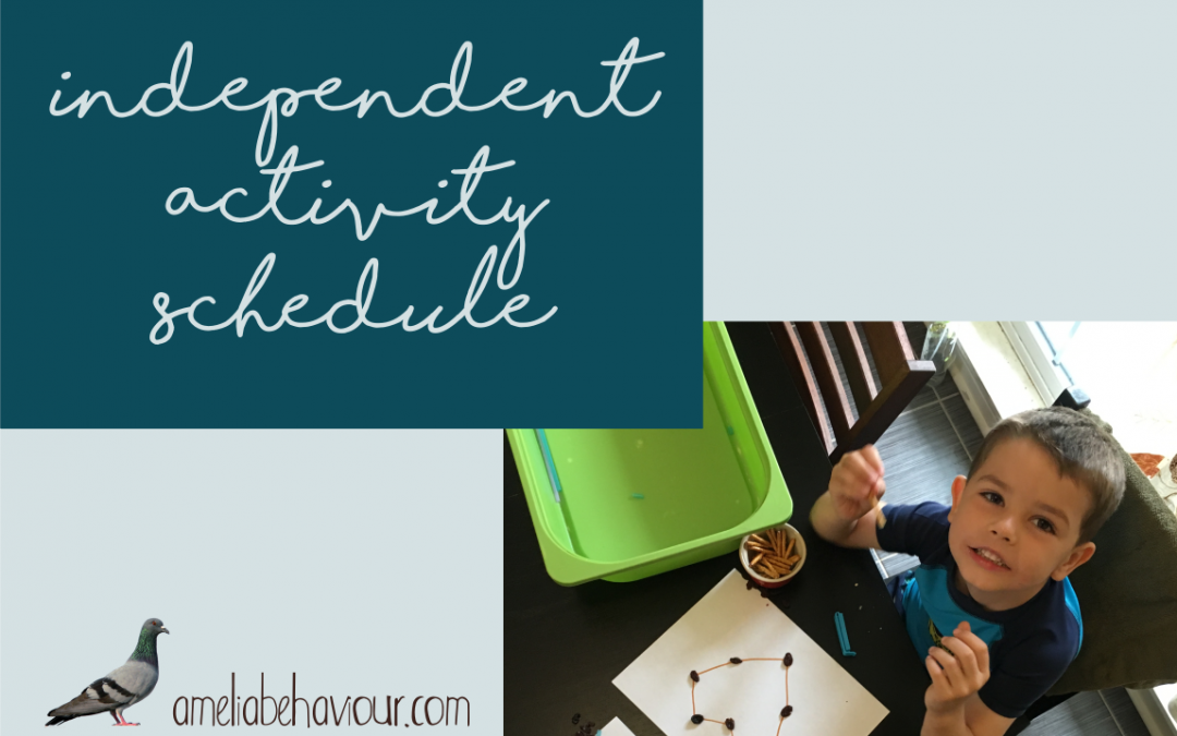 Independent Activity Schedules: in the home laboratory