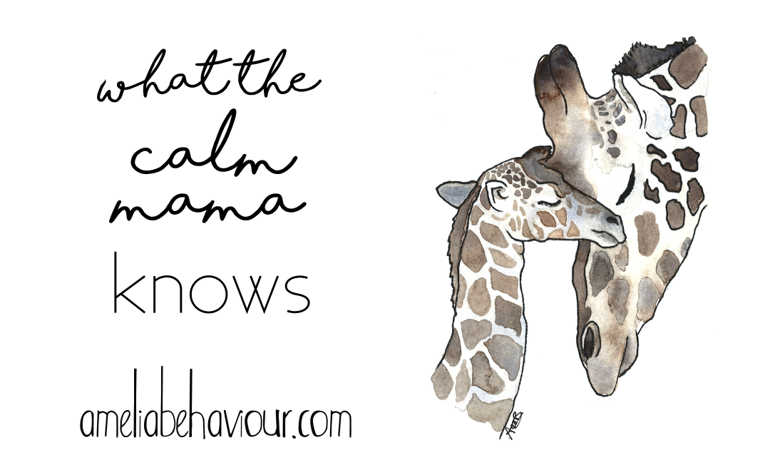 what the calm mama knows behaviour behavior strategy compassion