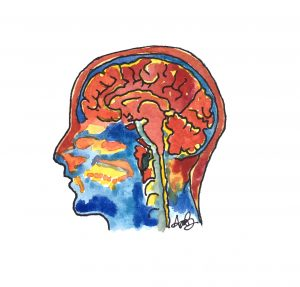 brain differences ODD disorder